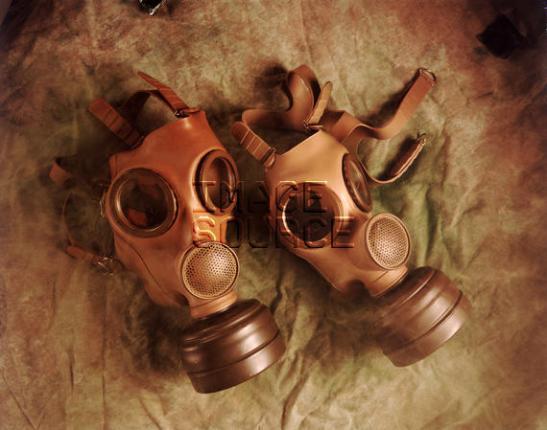 Matching gas masks for William & Ffion